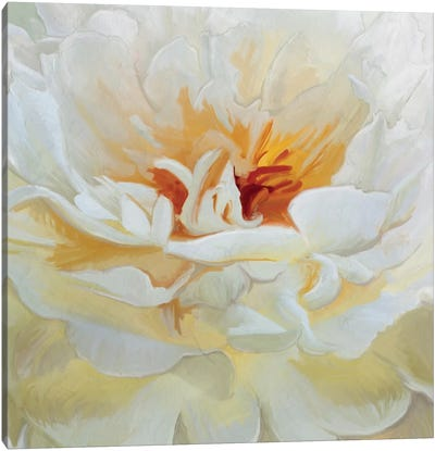 Alabaster Petals Canvas Art Print