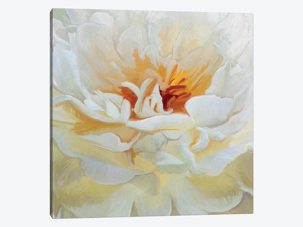 Alabaster Petals by 5by5collective 1-piece Canvas Art