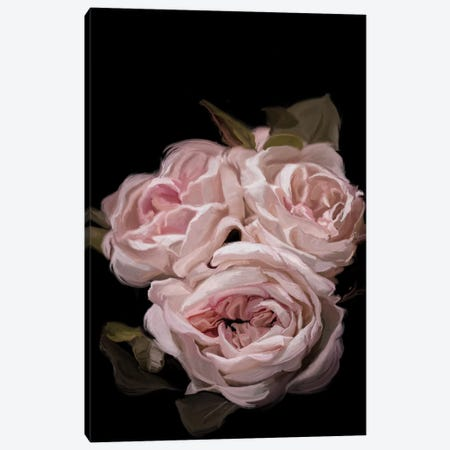 Antique Rose Canvas Print #MOO2} by 5by5collective Canvas Artwork