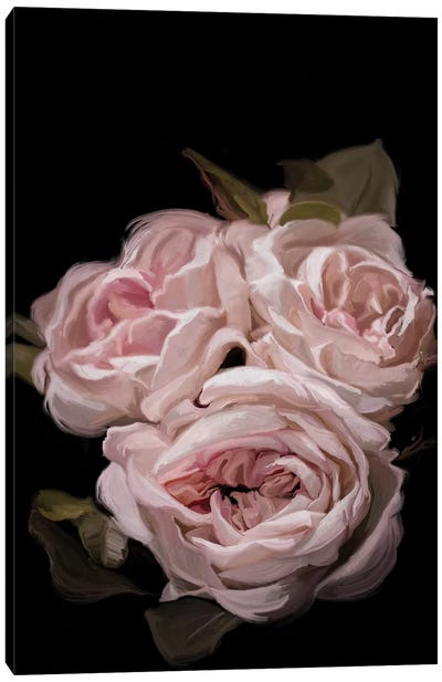 Antique Rose Canvas Art Print