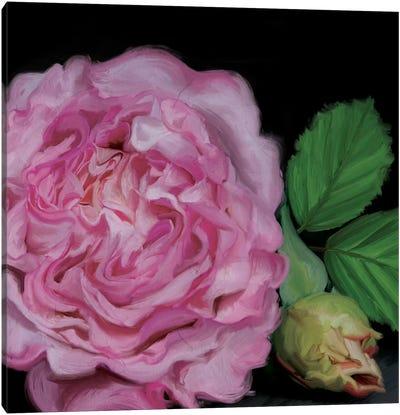 Augusta Louise Canvas Print #MOO3