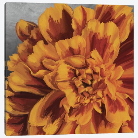Daylight in Bloom Canvas Print #MOO5} by 5by5collective Canvas Print