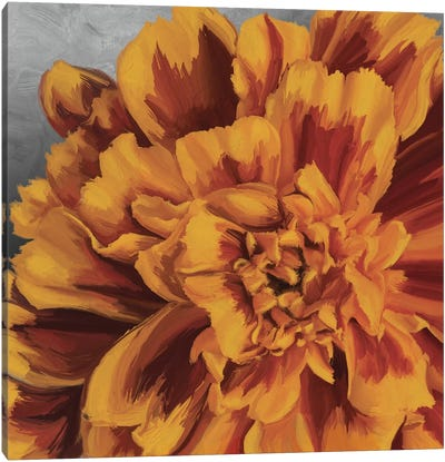 Daylight in Bloom Canvas Art Print