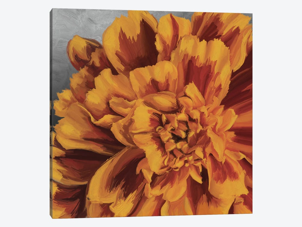 Daylight in Bloom by 5by5collective 1-piece Canvas Art