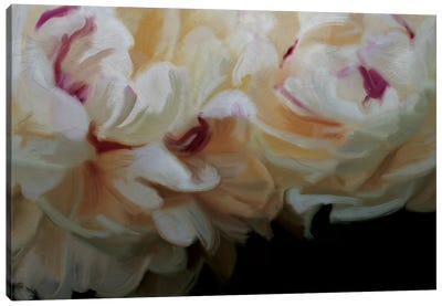 Ivory Blossom Canvas Art Print