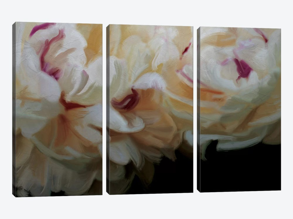 Ivory Blossom by 5by5collective 3-piece Canvas Print