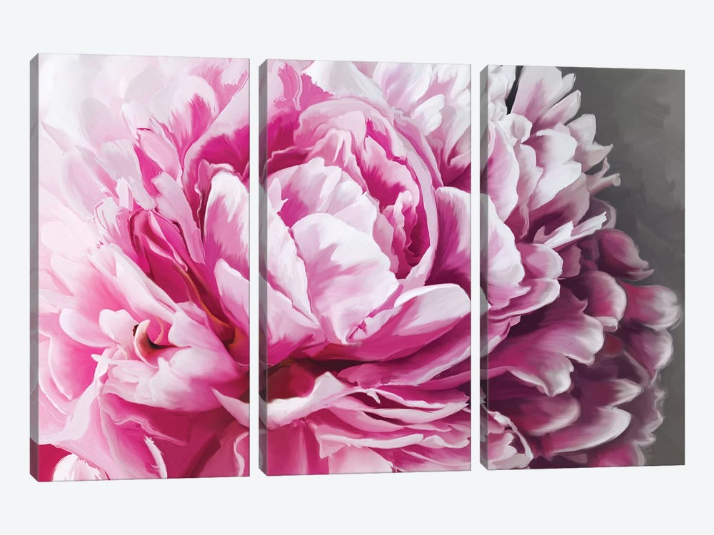 Peony Blush by 5by5collective 3-piece Canvas Print