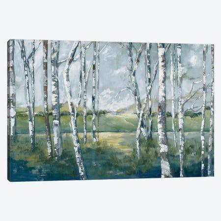 Woodland Magic Canvas Print #MPB12} by Mary Parker Buckley Canvas Wall Art