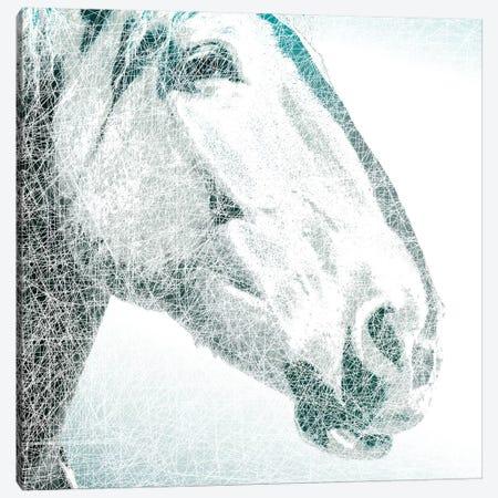 Equus Canvas Print #MPE1} by Marvin Pelkey Canvas Art Print