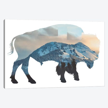 Bison Silhouette Canvas Print #MPH11} by MScottPhotography Canvas Art