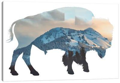 Bison Silhouette Canvas Art Print
