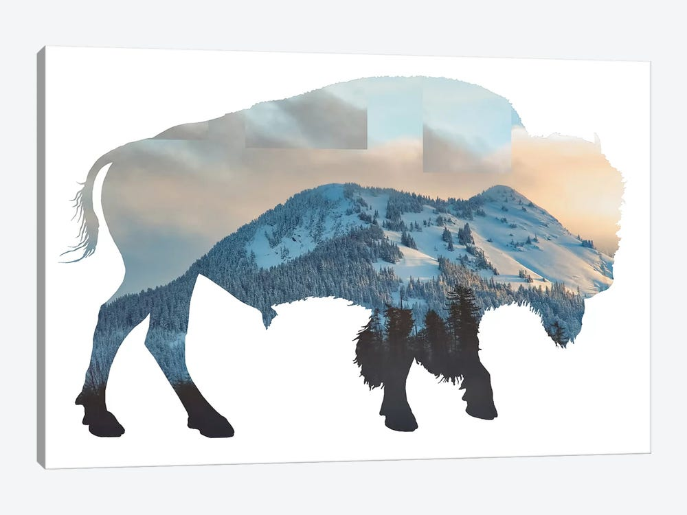 Bison Silhouette by MScottPhotography 1-piece Canvas Artwork