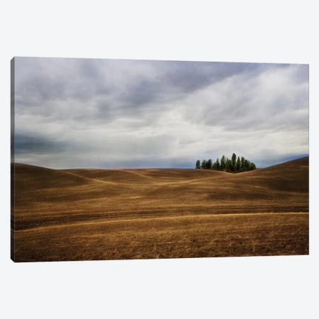 Rolling Canvas Print #MPH123} by MScottPhotography Art Print