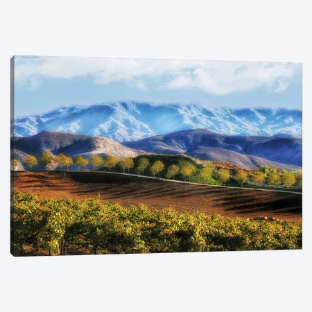 Temecula Valley Canvas Print #MPH150} by MScottPhotography Canvas Art
