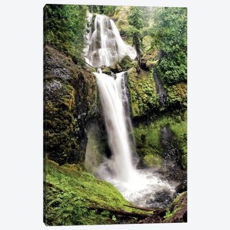 Waterfall Canvas Print #MPH160} by MScottPhotography Art Print
