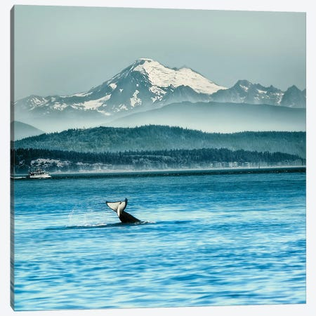 Whale Tale Canvas Print #MPH162} by MScottPhotography Canvas Print
