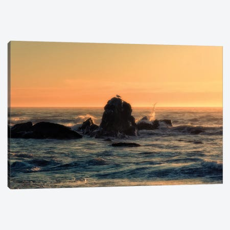Brookings Sunset Canvas Print #MPH16} by MScottPhotography Canvas Art Print