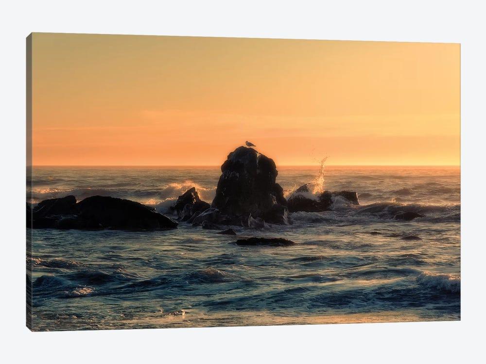 Brookings Sunset by MScottPhotography 1-piece Art Print