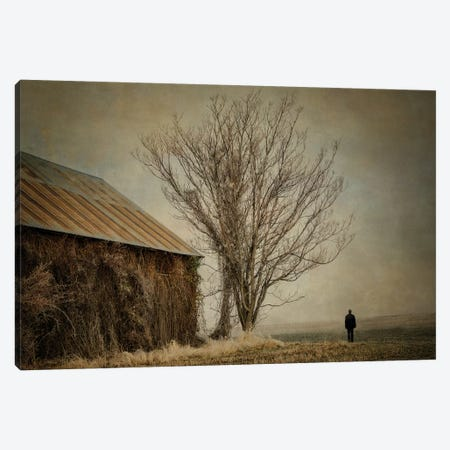 Desolation Canvas Print #MPH21} by MScottPhotography Canvas Print
