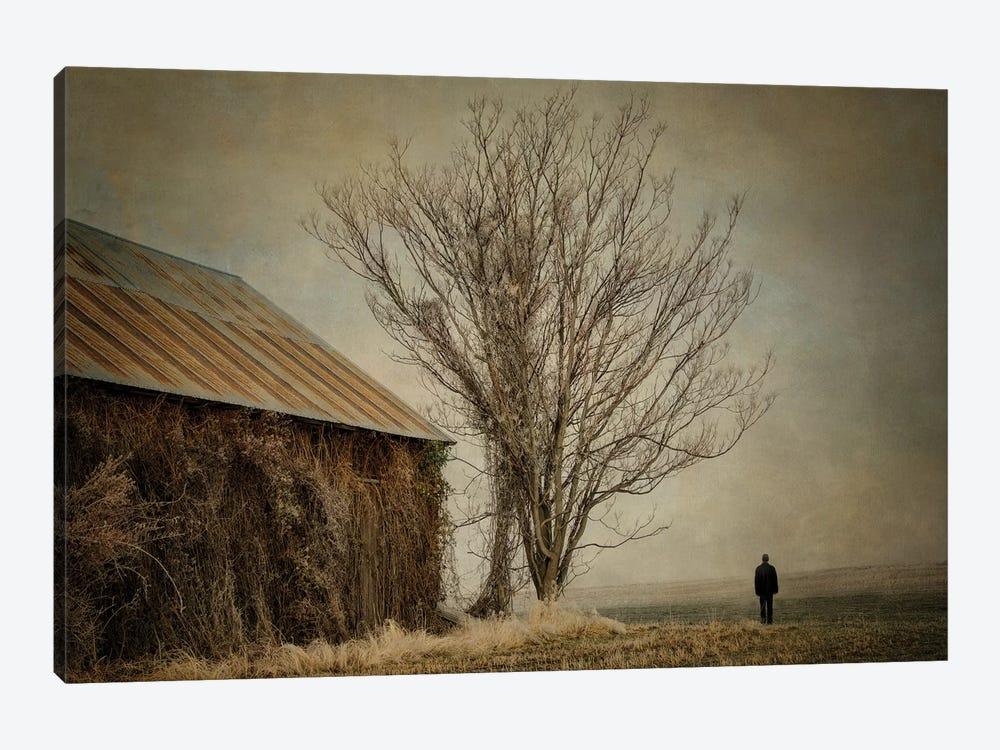 Desolation by MScottPhotography 1-piece Canvas Print