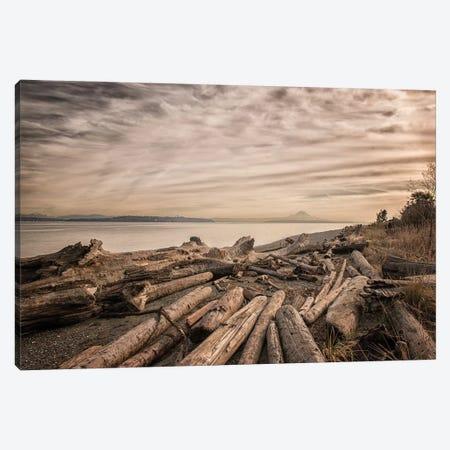 Driftwood Canvas Print #MPH27} by MScottPhotography Canvas Artwork