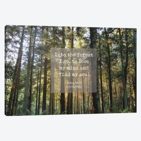 Into The Forest Canvas Print #MPH66} by MScottPhotography Canvas Art