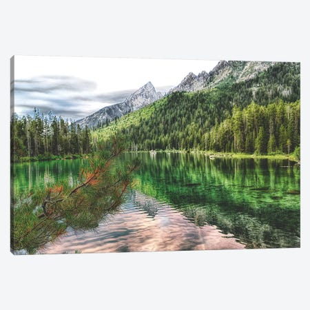 Jenny Lake Canvas Print #MPH67} by MScottPhotography Canvas Artwork