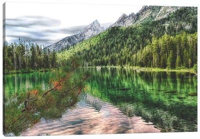 Jenny Lake Canvas Art Print