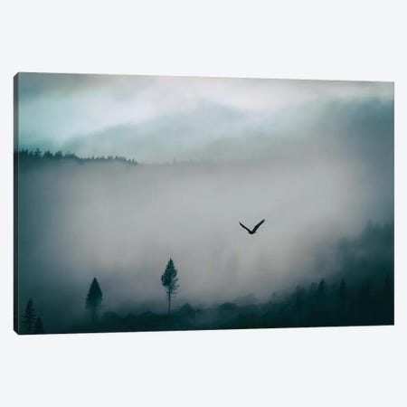 Misty Canvas Print #MPH85} by MScottPhotography Canvas Artwork