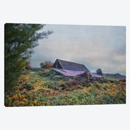 Beautiful Decay Canvas Print #MPH8} by MScottPhotography Canvas Art