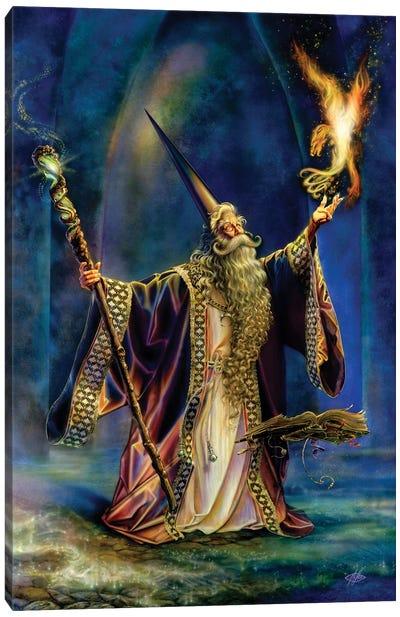 The Wizard Canvas Art Print