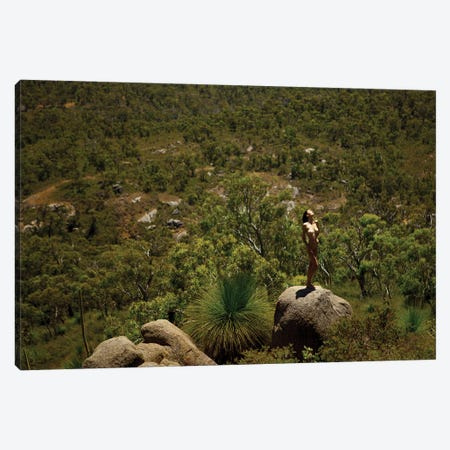 Into The Wild Canvas Print #MPN26} by Aaron McPolin Canvas Artwork