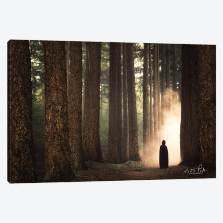 Ruben II Canvas Print #MPO100} by Martin Podt Canvas Wall Art