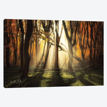 The Awakening Canvas Print #MPO105} by Martin Podt Art Print