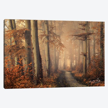 Brown Beauty Canvas Print #MPO10} by Martin Podt Art Print
