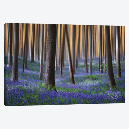Hallermotion Canvas Print #MPO114} by Martin Podt Canvas Artwork