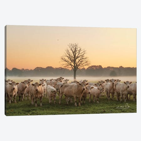 Just Come Cows And A Dead Tree Canvas Print #MPO126} by Martin Podt Canvas Print