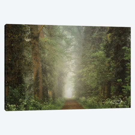 Misty Spring Road Canvas Print #MPO132} by Martin Podt Canvas Print