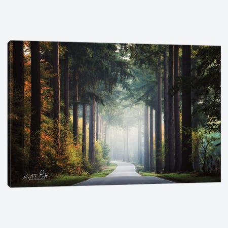 Mysterious Roads Canvas Print #MPO133} by Martin Podt Art Print