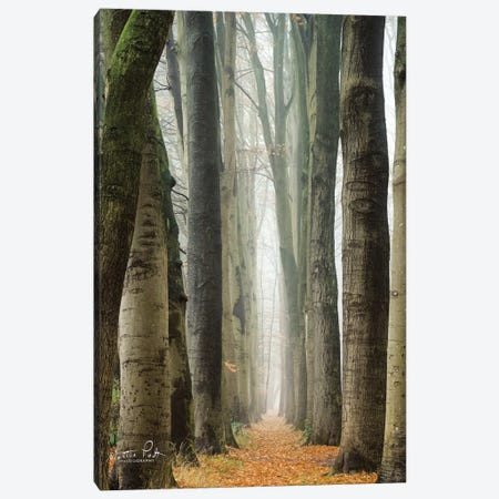 Narrow Alley In The Netherlands Canvas Print #MPO134} by Martin Podt Canvas Artwork