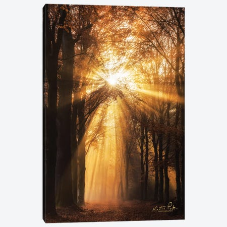 Sunburst Canvas Print #MPO141} by Martin Podt Canvas Art