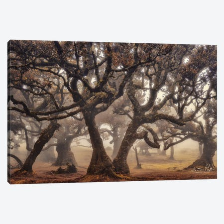 The Hidden Truth Canvas Print #MPO143} by Martin Podt Canvas Art