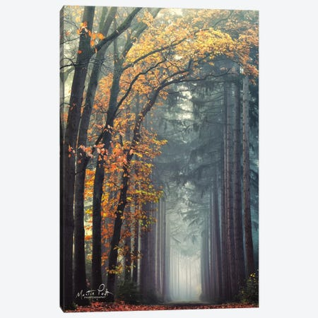 To Another World Canvas Print #MPO144} by Martin Podt Art Print