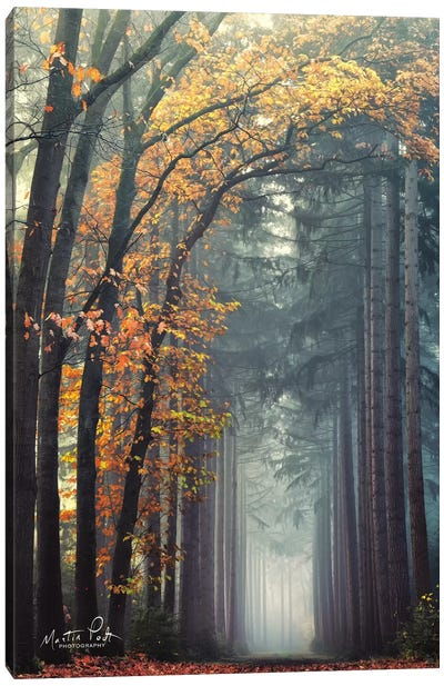 To Another World Canvas Art Print