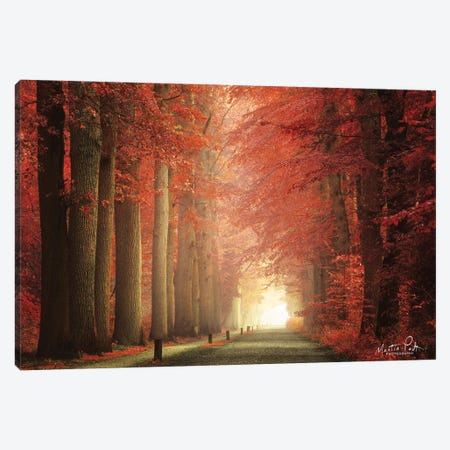 Way To Red Canvas Print #MPO145} by Martin Podt Canvas Art Print