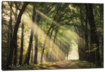 The Light of Lochem   Canvas Art Print