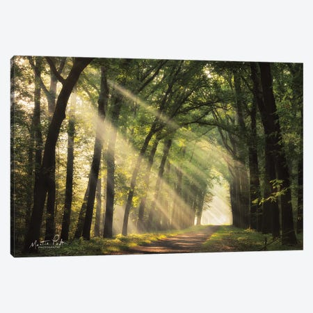 The Light of Lochem   Canvas Print #MPO149} by Martin Podt Canvas Art