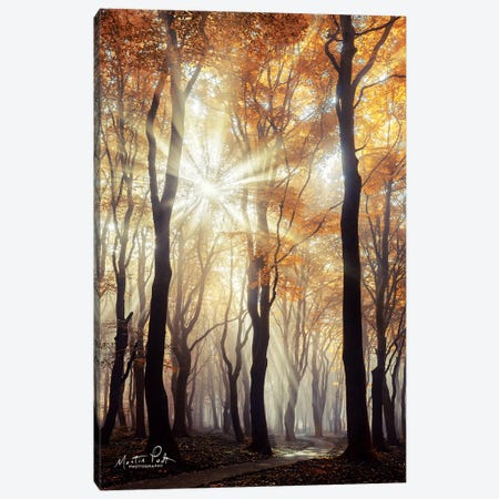 Explosion Canvas Print #MPO14} by Martin Podt Canvas Artwork