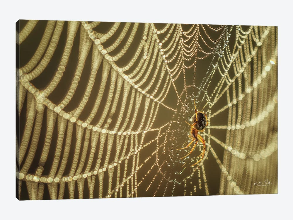 The Spider And Her Jewels by Martin Podt 1-piece Art Print