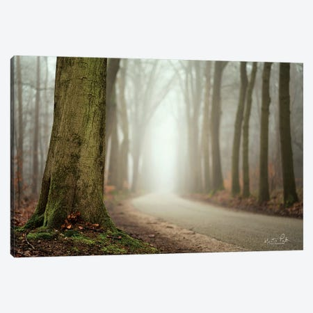 Focus on What You Want Canvas Print #MPO15} by Martin Podt Canvas Artwork